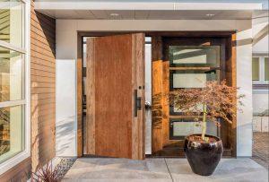 contemporary-exterior-door-49923